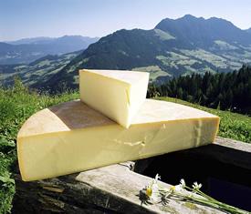 heumilchkaese-alpbachtal-bergkaese